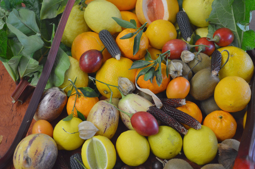 Fruit In Season Spring