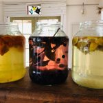 Fermenting Workshop with Wild Earth Mother