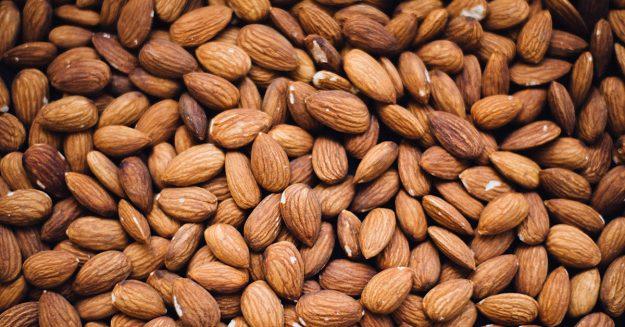 buy nut trees